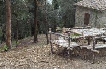 San Giorgio 2017 – Cortona (AR)